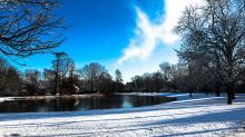 snow-Vondelpark