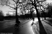 Street Photography Amsterdam  Lighting Vondelpark