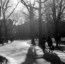 Street Photography Amsterdam against light