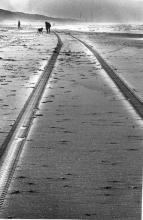 Street Photography Amsterdam Beach tracks