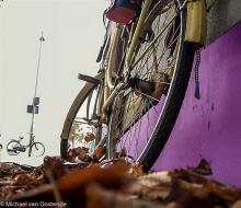 Street Photography Amsterdam Bike leaves