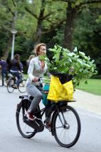 Street Photography Amsterdam Plant whisperer
